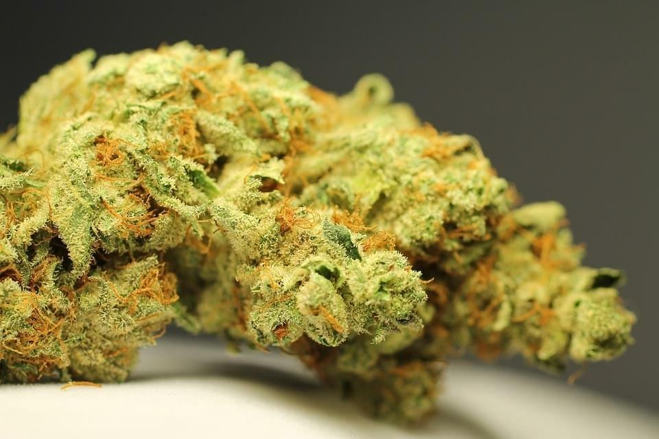 What is THC? 2
