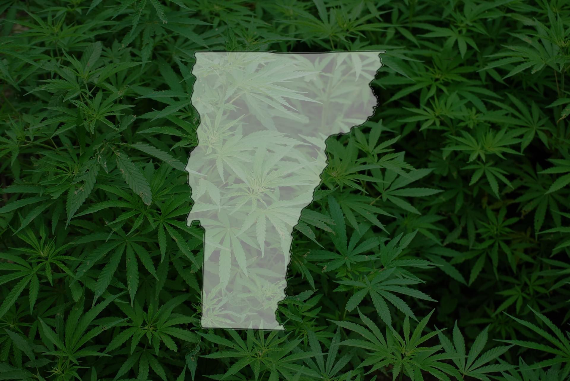 Image result for Recreational marijuana now legal in Vermont as new law takes effect