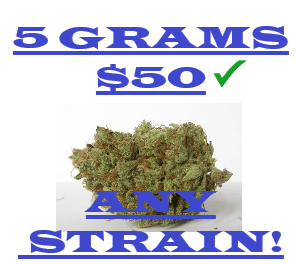 5 GRAMS FOR $50 ANY ONE STRAIN