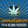 Canna Grove