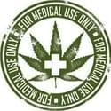 ACCESS PATIENTS AND CAREGIVERS ALLIANCE INC Marijuana Dispensary