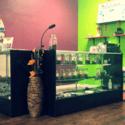 iBud Collective Marijuana Dispensary