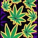 Western Med Center 2AM Marijuana Dispensary