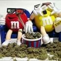 TKO Delivery Marijuana Dispensary
