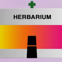 Herbarium Marijuana Dispensary