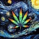 Exotik 420 DELIVERY Marijuana Delivery Service