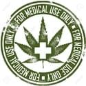 Chillmode Society Marijuana Delivery Service