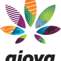 Ajoya - Lakewood Marijuana Dispensary