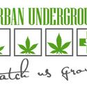 Herban Underground Marijuana Dispensary