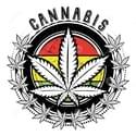 Mobile Collective Cooperative Inc Marijuana Delivery Service