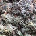 1489 Dundas Marijuana Dispensary