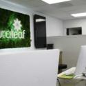 Curaleaf - Oxford Marijuana Dispensary