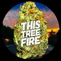 thistreefire Marijuana Delivery Service