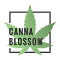 Canna Blossom Marijuana Delivery Service