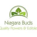 Niagara Buds Marijuana Delivery Service