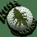 KushNation Marijuana Delivery Service