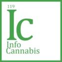 InfoCannabis Marijuana Doctor