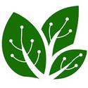 Leaf & Relief Herbal Wellness Clinic Marijuana Doctor