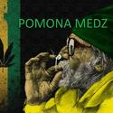 Pomona Medz Marijuana Dispensary