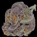 Bulk Cannabis - Same Day Delivery Marijuana Delivery Service