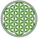 The Flower of Life Marijuana Delivery Service