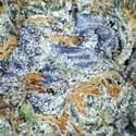 Garden Cure Collective Marijuana Delivery Service