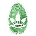 Organic Caregiver Marijuana Delivery Service