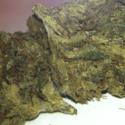 Sour Dank Organics Collective of Ocean Beach Marijuana Delivery Service