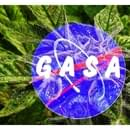FREE FREE FREE DELIVERY!!! GASA_