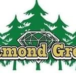 Diamond Green Marijuana Dispensary