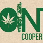 The Joint Cooperative Marijuana Dispensary