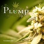 PLUMP Marijuana Dispensary