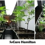 SVCare Collective-Hamilton Marijuana Dispensary