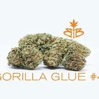 Gorilla-Glue-#4