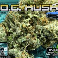 Paradise 420 - Marijuana Delivery - Huntington Beach - OG Kush.png