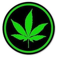 weed leaf 3.jpg