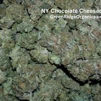 NY Chocolate Cheesecake