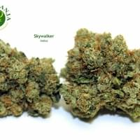 Indoor grown offering an musty, sweet, and earthy taste. Mr. P has been growing and painstakingly pampering this strain for over a decade. This batch is wonderful and we are super pleased and grateful to offer it to members. Skywalker OG helps patients re