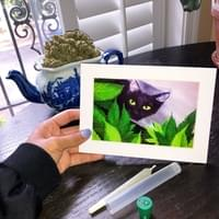 Cat Nip by Olivia