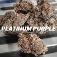 Platinum Purple
