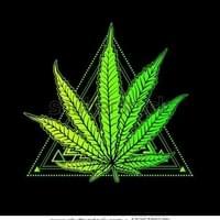 cannabis-leaf-marijuana-herb-weed-450w-1029789199.jpg