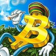 BEST VALUE Buds, Grubs & Vapes (25% OFF ALL CRYPTO-CURRENCY
