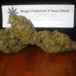 Papadon's Marijuana Dispensary