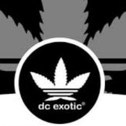 🔥DcExotic🔥New strains🔥 1/8 🚨 2026301003🔥0 OG oz special