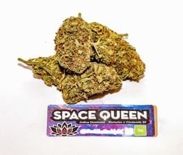 SpaceQueen.JPG