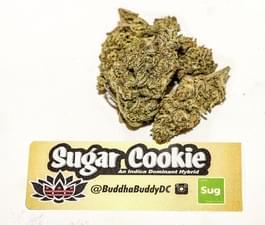 SugarCookie.JPG