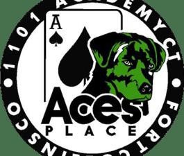 Ace's Corrected LogoFINAL.png
