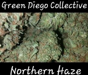 Photo from Green Diego Collective-Delivery