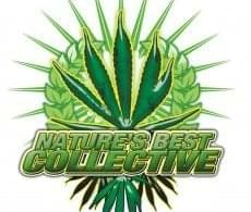 Photo from Natures best Collective
