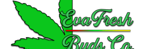 Evafresh Buds